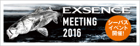 EXSENCE MEETING 2016