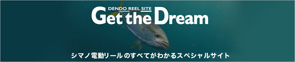 DENDO REEL SITE Get the Dream